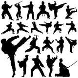 De vector van de vechter stock illustratie