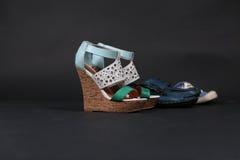 De vector van de vrouwenschoenen van de manier Stock Fotografie