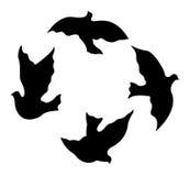 De Vector van duifsilhouetten royalty-vrije stock foto's