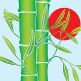 De vector van het bamboe Stock Afbeelding