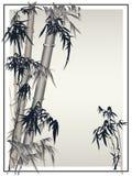 De vector van het bamboe in traditionele Aziatische stijl. Stock Afbeelding