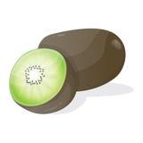 De vector van het kiwifruit Stock Foto's