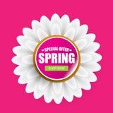 De de vector van het het ontwerpmalplaatje van de de lenteverkoop banner of markering op roze achtergrond Het abstracte roze etik Royalty-vrije Stock Foto's