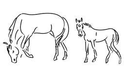 De vector van het veulen en van de merrie Royalty-vrije Stock Fotografie