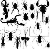 De vector van insectsilhouetten Stock Foto's