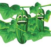 De vector van komkommertoon Royalty-vrije Stock Foto