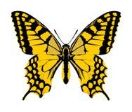 De vector van de monarchvlinder met open vleugels royalty-vrije illustratie