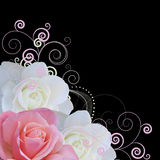 De vector van rozen en van wervelingen Stock Afbeeldingen