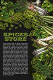 De vector van schetskruiden en kruiden affiche van de landbouwbedrijfopslag Stock Fotografie