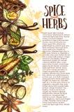 De vector van schetskruiden en kruiden affiche van de landbouwbedrijfopslag Royalty-vrije Stock Foto's
