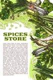 De vector van schetskruiden en kruiden affiche van de landbouwbedrijfopslag Royalty-vrije Stock Afbeeldingen
