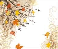 De vectorachtergrond van de herfst Royalty-vrije Stock Fotografie