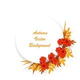 De vectorachtergrond van de herfst EPS8 vector Stock Foto's