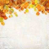 De vectorachtergrond van de het pleistermuur van de herfstbladeren vector illustratie