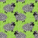 De vectorachtergrond van het schapenpatroon Stock Afbeeldingen