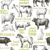 De vectorachtergrond van landbouwbedrijfdieren Uitstekende illustratie Hand getrokken dieren Landbouwbedrijf Naadloos Patroon vector illustratie