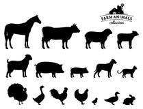 De vectordieSilhouetten van Landbouwbedrijfdieren op Wit worden geïsoleerd Royalty-vrije Stock Fotografie
