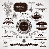 De vectorelementen van het huwelijksontwerp en kalligrafische paginadecoratie Royalty-vrije Stock Afbeelding