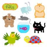 De vectorhuisdierenillustratie isoleerde Leuke reeks Witte Kat als achtergrond, hond, vissen, hamster, papegaai, schildpad, konij Stock Foto