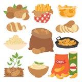 De vectorillustratie de plantaardige aardappelproducten rijp voedsel sneden kookte gestoofde gestoomde gebraden gerechten ruwe ma vector illustratie
