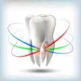 de vectorillustratie van de beeldtand voor tandheelkunde Stock Foto
