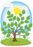 De vectorillustratie van de boom vector illustratie