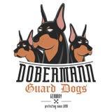 De vectorillustratie van de Dobermannhond Stock Fotografie
