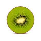 De vectorillustratie van de kiwi Royalty-vrije Stock Foto