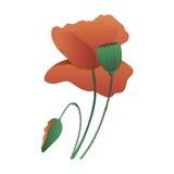 De vectorillustratie van de papaverbloem Stock Afbeelding