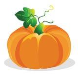 De vectorillustratie van de pompoen Royalty-vrije Stock Afbeeldingen