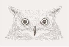 De vectorillustratie van de schets decoratieve uil Royalty-vrije Stock Fotografie