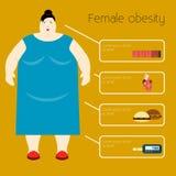De Vectorillustratie van de zwaarlijvigheidsvrouw royalty-vrije illustratie
