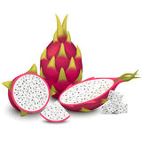 De vectorillustratie van Dragon Fruit Stock Foto's