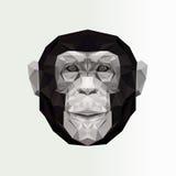 De vectorillustratie van het aapbeeldverhaal Zwart-wit dierlijk beeld Stock Foto's