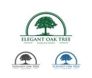 De vectorillustratie van het embleemontwerp van eiken boomembleem, wijs en sterk, toevlucht van het het huisverblijf van het huis royalty-vrije illustratie