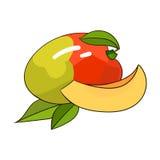 De vectorillustratie van het mangofruit Stock Foto's