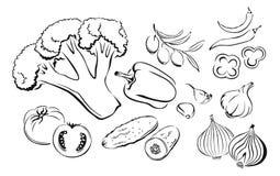 De vectorillustratie van het overzichtsbeeldverhaal van groenten royalty-vrije illustratie
