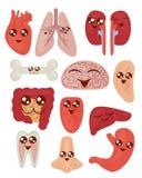 De vectorillustratie van leuke kleurrijke beeldverhaal grappige organen plaatste met gezondheidsconcept op de witte achtergrond i royalty-vrije illustratie