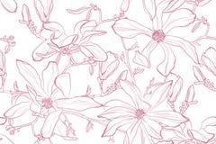 De vectorillustratie van de magnoliabloem Naadloos patroon met roze bloemen op een witte achtergrond royalty-vrije stock foto