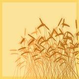 De vectorillustratie van oren. Royalty-vrije Stock Fotografie