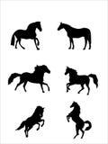 De vectorillustratie van paarden Royalty-vrije Stock Afbeelding