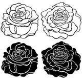 De VectorIllustratie van rozen Stock Foto