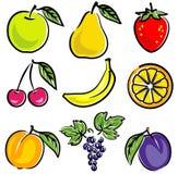 De VectorIllustratie van vruchten Royalty-vrije Stock Afbeeldingen