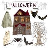 De vectorillustratiereeks van beeldverhaal assorteerde Halloween-toebehorenspin, Zwarte Kat, Web, Knuppel, landschap met eng oud  vector illustratie