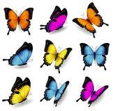 De vectorillustraties van de kleurenvlinder Stock Afbeelding