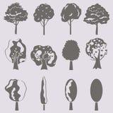 De vectorinzameling van boomsilhouetten isoleert Royalty-vrije Stock Fotografie