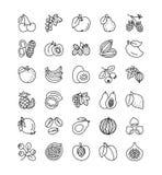 De vectorinzameling van het lijnpictogram Vruchten, bessen en noten Gezond v stock illustratie