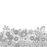 De vectorkrabbel bloeit naadloze grens Botanisch en bloem decoratief element Royalty-vrije Stock Afbeeldingen
