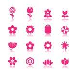 De vectorreeks van de bloem Royalty-vrije Stock Fotografie