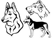 De vectorreeks van de hond   Royalty-vrije Stock Foto's